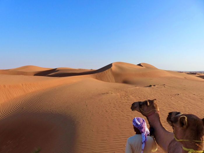 Desert Deserts Around The World Oman Wahiba Sands Arid Climate Beauty In Nature Camel Caravan Clear Sky Desert Desert Beauty Desert Landscape Landscape Lifestyles Men Nature Outdoors Real People Sand Sand Dune Scenics