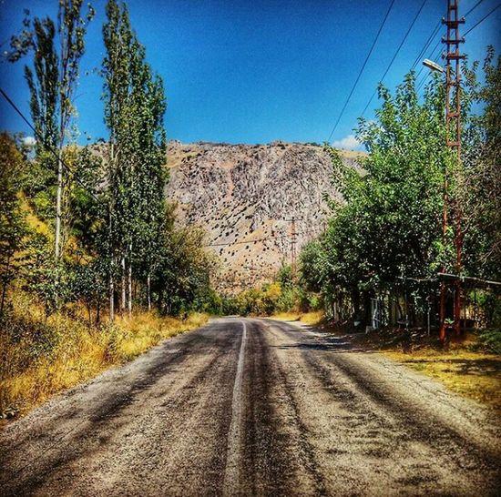 Mountain Autumn Eğin Kemaliye Erzincan Tree Road Diminishing Perspective Sky