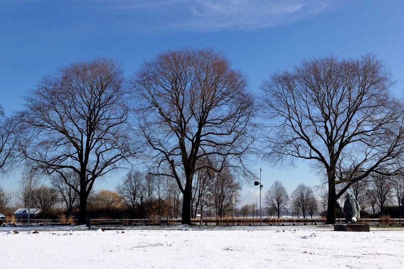 Testing straightening function eyeem.. Rembrandt 's View Amstel River Trees YOU BLUE ME AWAY...... Trying To Get It Right  Landscape Blue Sky Melting Snow