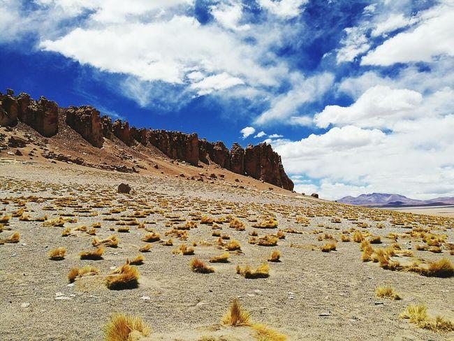 Catedrales, Salar de Tara, San Pedro de Atacama. Chile Sanpedrodeatacama Desierto De Atacama Sky Cloud - Sky Sand Landscape Desert Outdoors First Eyeem Photo