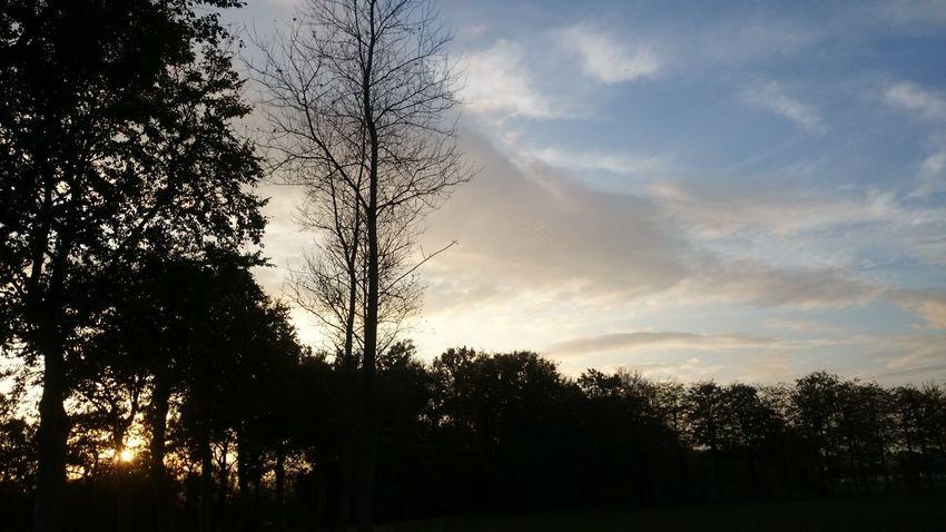 Sunset EyeEm Nature Lover Light And Shadow EyeEm Best Shots