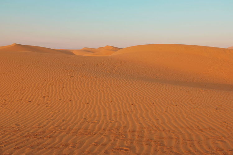 Desert Desert Living Desert Life Middle East Nature Sunset Alone Sky Sand UAE Abudhabi Horizon