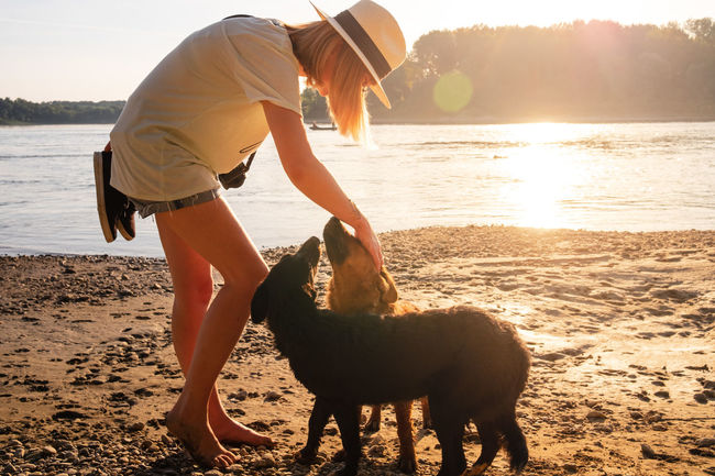 Animal Animal Themes Beach Domestic Domestic Animals Full Length Hairstyle Land Leisure Activity Lifestyles Mammal Nature One Animal One Person Outdoors Pets Real People Sea Sunlight Vertebrate Water