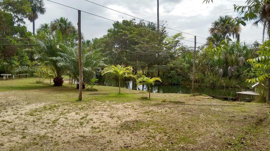 Interior Do Estado Sítio Hejapeha Igarapé Azul Igarapé Banho passeio pelo sitio
