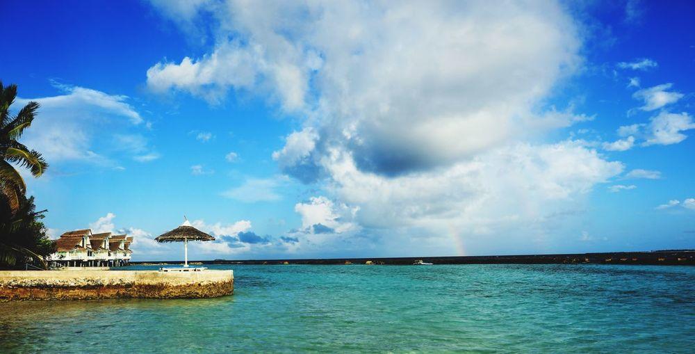 Colour Of Life island Sea S K Y beauty in natur Taking Photos Maldives Eyeem Eyemphotography Trip Tree