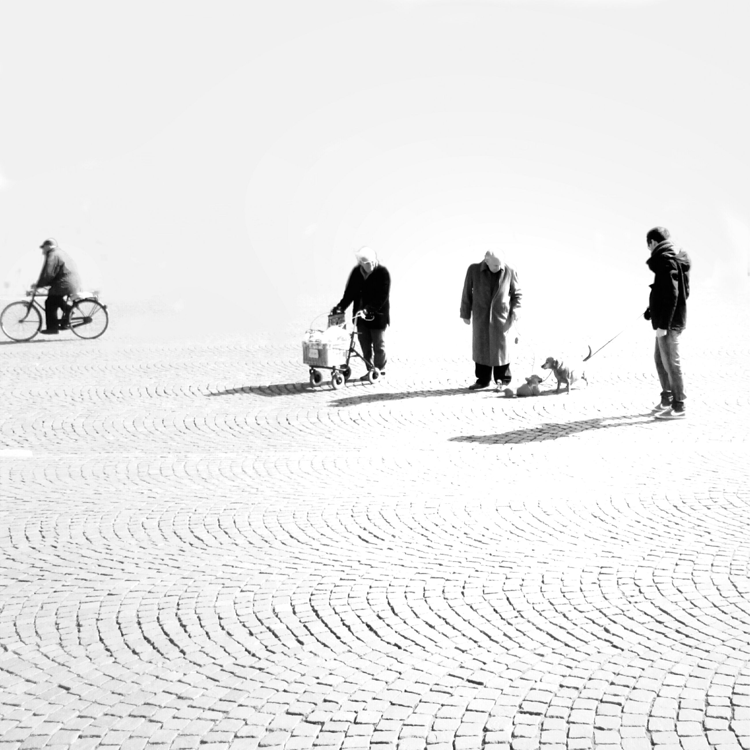 men, lifestyles, leisure activity, walking, clear sky, full length, copy space, person, togetherness, sand, medium group of people, rear view, friendship, large group of people, standing, day