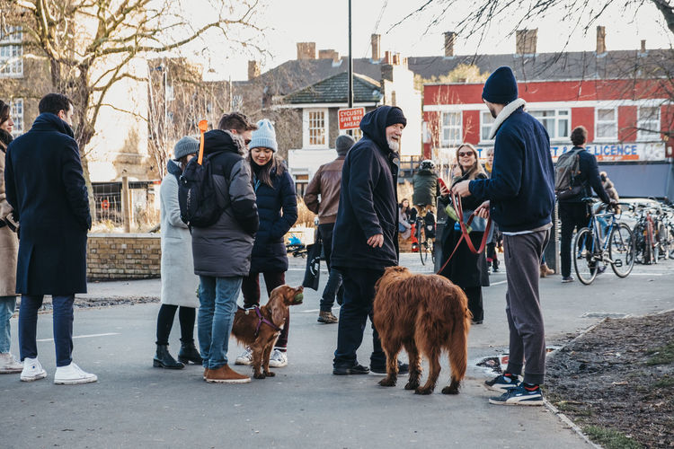 Dog owners chatting in a park in East London, UK. London Uk East London City City Life Weekend Activities Winter Day Real People Pets Domestic Animals Group Of People Lifestyles Dog Owner Talking Chatting Park Street Dog Men People