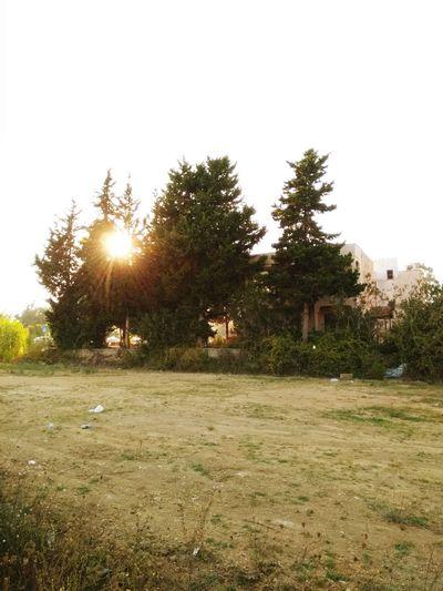 Sun Sunhine Holiday Avsallar Turkey
