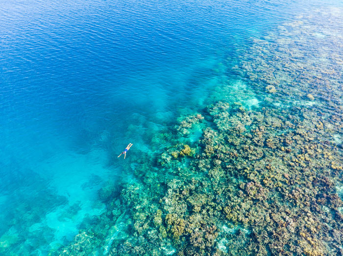 Sea Water Underwater Swimming Nature Beauty In Nature UnderSea Blue Leisure Activity Sport High Angle View Rock Lifestyles Real People Adventure Solid Rock - Object Day People Outdoors Turquoise Colored