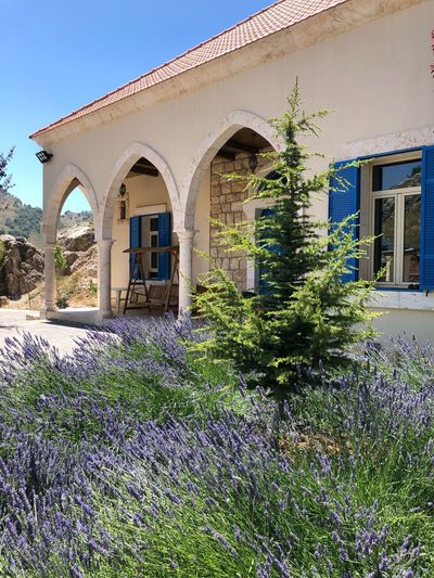 Traditional Lebanese House Mountain Laqlouq Lebanon Architecture Built Structure Building Exterior Building Plant Arch Day