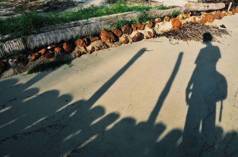 Tropical Paradise Treveling Bintanisland Travel Destinations Beach Shadow Men Sunlight Sand High Angle View Focus On Shadow Long Shadow - Shadow