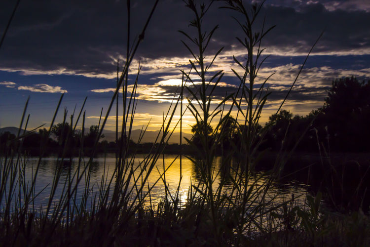 Atmosphere Atmospheric Mood Beauty In Nature Cloud Lost In The Landscape Dramatic Sky Glowing Grass Growth Lake Majestic Nature Non-urban Scene Plant Reflection Ribo Scenics Silhouette Sky Sun Sunset Tranquil Scene Tranquility Water WorldOfHuntingAndFishing Perspectives On Nature Postcode Postcards