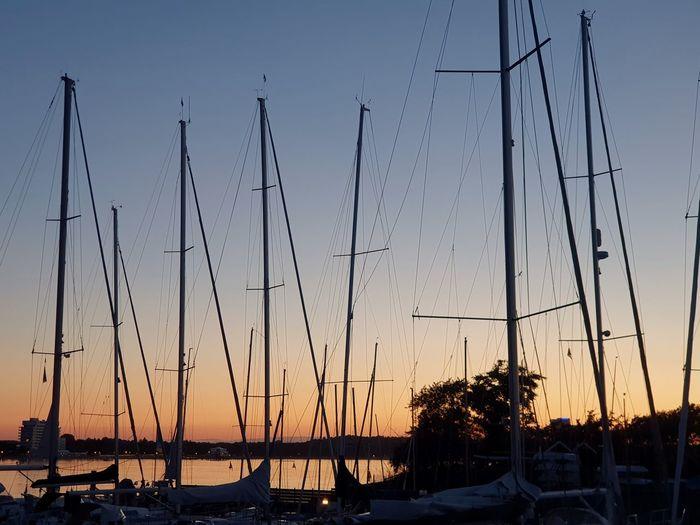 Sailboats in marina at sunset