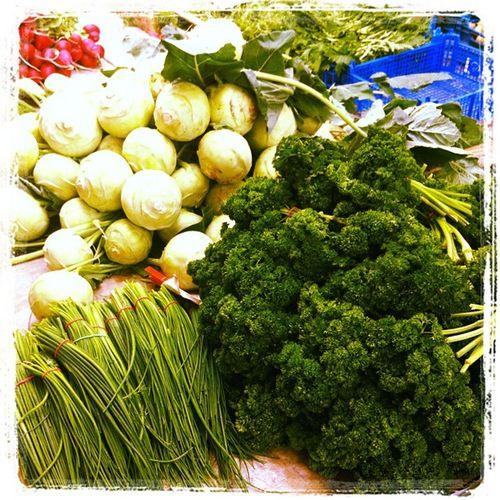 #freiburg #markt #breisgau #deutschland Deutschland Freiburg Markt Breisgau