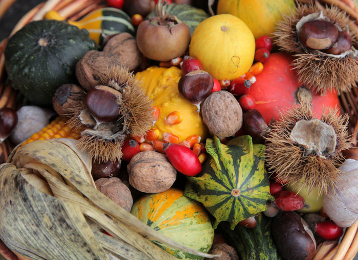 Autumn Harvest Organic Agriculture Autumn Bunch Chestnuts Food Food And Drink Freshness Fruit Harvest Healthy Healthy Eating Ingredient Multi Colored Organic Pecan Pumpkin Raw Ripe Season  Vegetables Vitamin