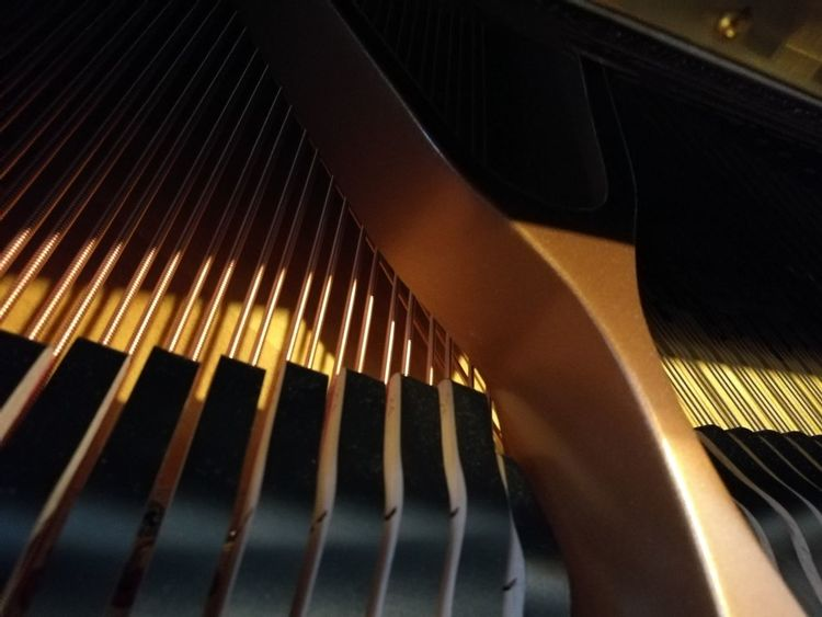 Grand Piano Pattern Close-up Musical Instrument No People Indoors  Musical Instrument String Day Piano Pianolover Pianolove