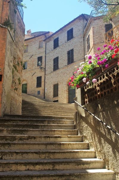Steps..... Breathing Space Hills Holiday Old Town Architecture Blue Sky Built Structure Flower Growth Outdoors Sky Staircase Steps