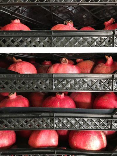 Pomegranate Red Fruit Pomegranate Juice Pomegranate Tree Pomegreneta Drink Pomegranate Drink Nature Pomegranete