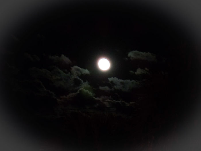 MyPics Colorful Sky Awesome Night View Nightshot🌙 Moon Shots Moonlight Moon And Clouds Eye4photography  CarmenVazquezPhotography Nightshot Nature Photography Checkthis Out Moon_lovers NiceShot Naturephotography Light And Shadow Taking Pictures Florida Nature Clouds And Moon Moonphotography