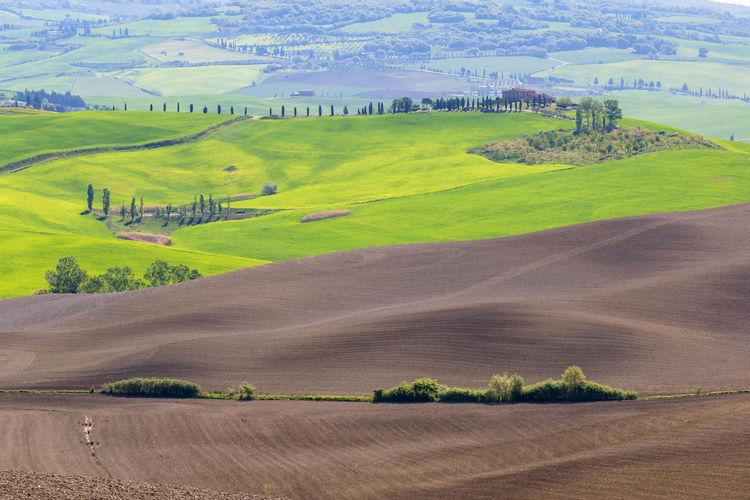 View in tuscany with newly sown fields