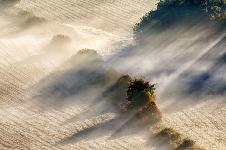 Sun rays in fog on a new harvested field Agriculture Farmland Sunrays Treelined Weather Awesome Beauty In Nature Dawn Dusk Environment Fog High Angle View Landscape Mist Misty Morning Nature No People Scenics - Nature Shadow Stubble Field Sunbeam Sunlight Sunrise Tranquil Scene Tree