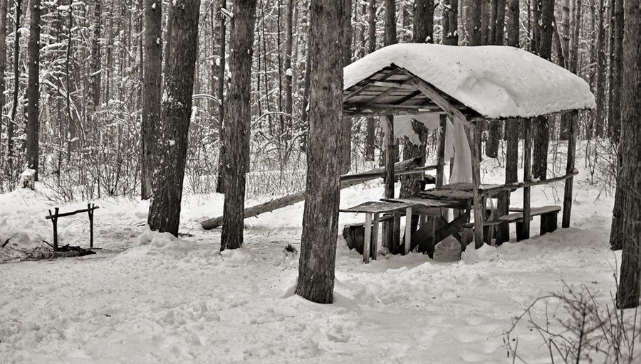 зима Winter