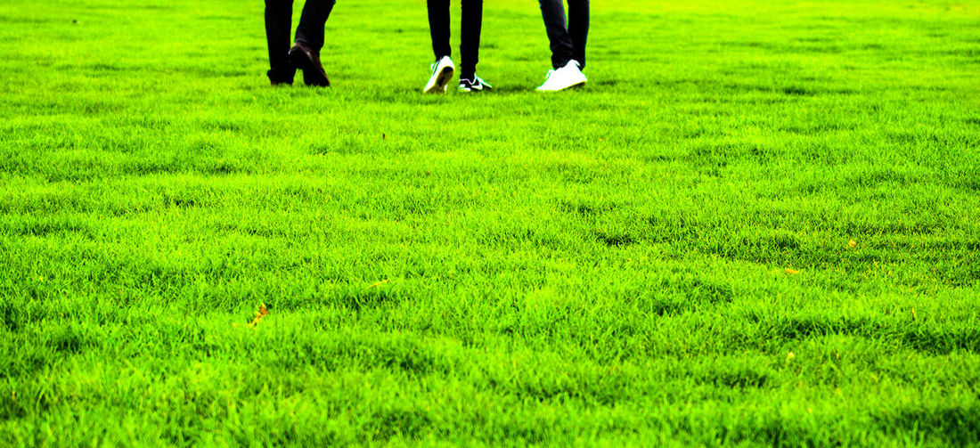 Adult Adults Only Day Golf Golf Course Golfer Goodbye Grass Green - Golf Course Green Color Growth Human Body Part Human Leg Lifestyles Low Section Meadow Men Nature One Person Outdoors People Real People Women Long Goodbye Out Of The Box Sommergefühle Neon Life Creative Space #urbanana: The Urban Playground