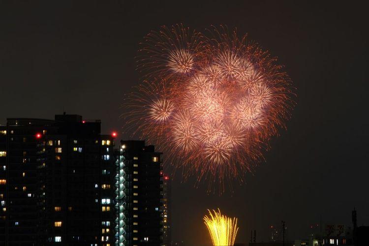Tokyo,Japan X-E2 Firework Gogh Les Tournesols. No People Sunflowers Hexanon 花火 隅田川 ひまわり ゴッホ
