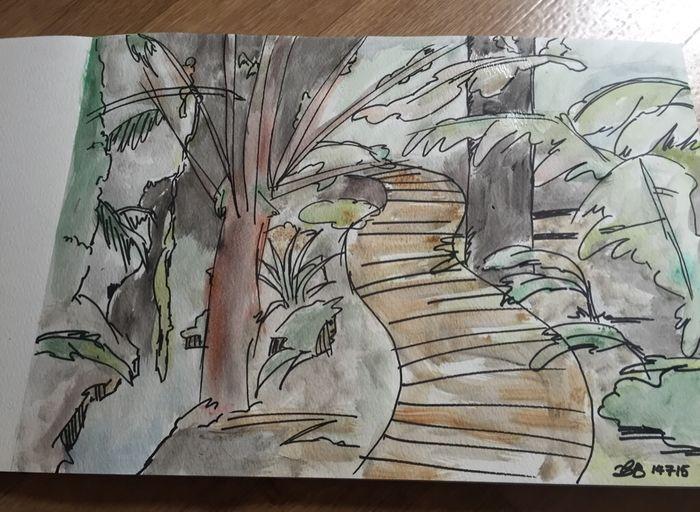 Painting Watercolor Sketch Australian Landscape Fun Colourful