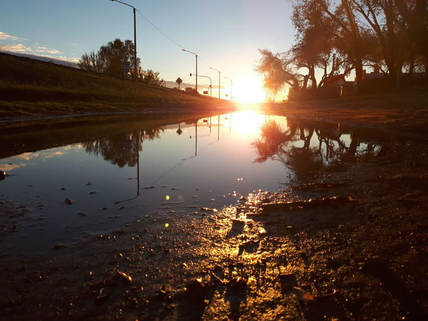 Tree No People Water Mud Dawn Water Sunlight Reflection Sky Puddle Sunrise