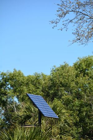 Solar panel among the trees negative space Copy Space Energy Solar Panel Solar Energy Environmental Conservation Alternative Energy Day Fuel And Power Generation Sky Outdoors No People Tree Technology Nature Beauty In Nature Low Angle View Clear Sky Blue Renewable Energy Energy Efficient Power Supply Sustainable Lifestyle