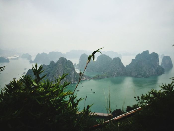 Secret Places Secret Paths Halong Bay Vietnam Dragon Legends Mountain Nature Water Tree Outdoors Scenics No People Fog Day Beauty In Nature Sky
