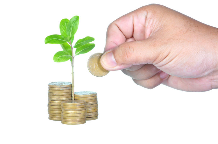 hand add gold coin to profitable investment concept with sprouting plant over stacking gold coins Banking Budget Business Close-up Coins Donation Expenses Finance Gold Golden Gst Human Hand Investment Leaf Money Office Pension Profit Prosperity Reputation Retirement Saving Stack Tax Taxes