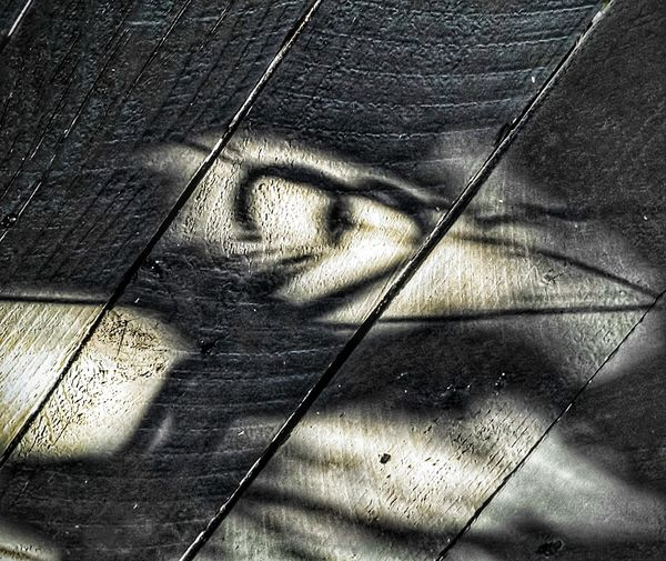 Cari amici, cosī lontani... Shadow Full Frame High Angle View Sunlight Close-up Surface