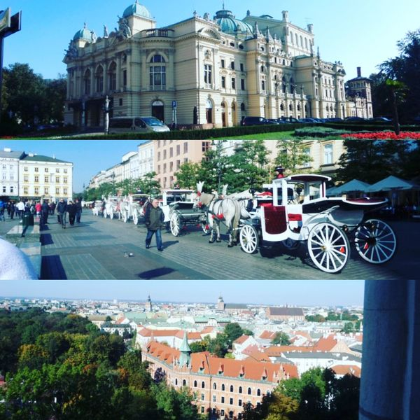 Pologne Cracovia  Ms2 👌