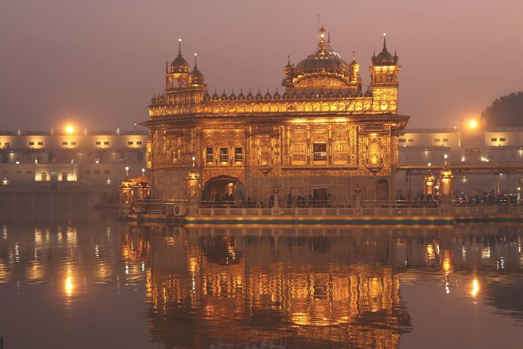 A golden ensnaring at the golden temple