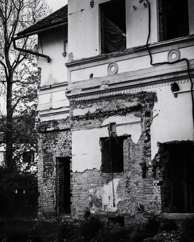Architecture No People Built Structure Building Exterior Abandoned Building Old Window Day Damaged Outdoors Weathered Low Angle View Residential District House Run-down Obsolete Tree Nature Plant Ruined Black And White EyeEm Best Shots EyeEmNewHere EyeEm Selects EyeEm Gallery Dark Mood Medieval Ruins Abandoned Places Concept Conceptual Nikon D7500