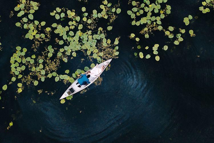 - Kayak tour on