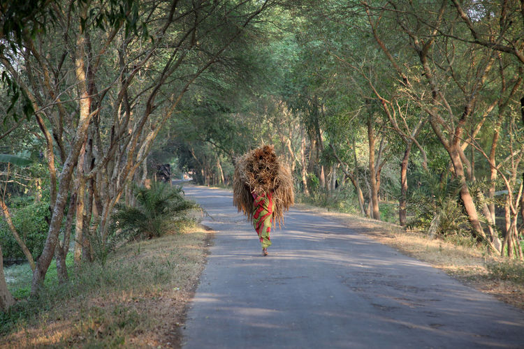Woman carrying hay bale on road amidst trees