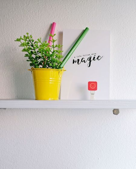 freshness on the wall Power Motto Concept Interior Decoration Life Color Pencil Growth Green Color Potted Plant Text Indoors  Plant No People Yellow Day Freshness