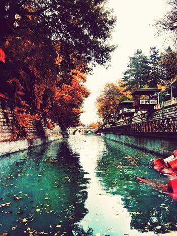 Konyaspor Konyagram Taking Photos Hi! Everything Bagel Bosna Hersek Konya Istanbul City Konya Selçuklu Turkish