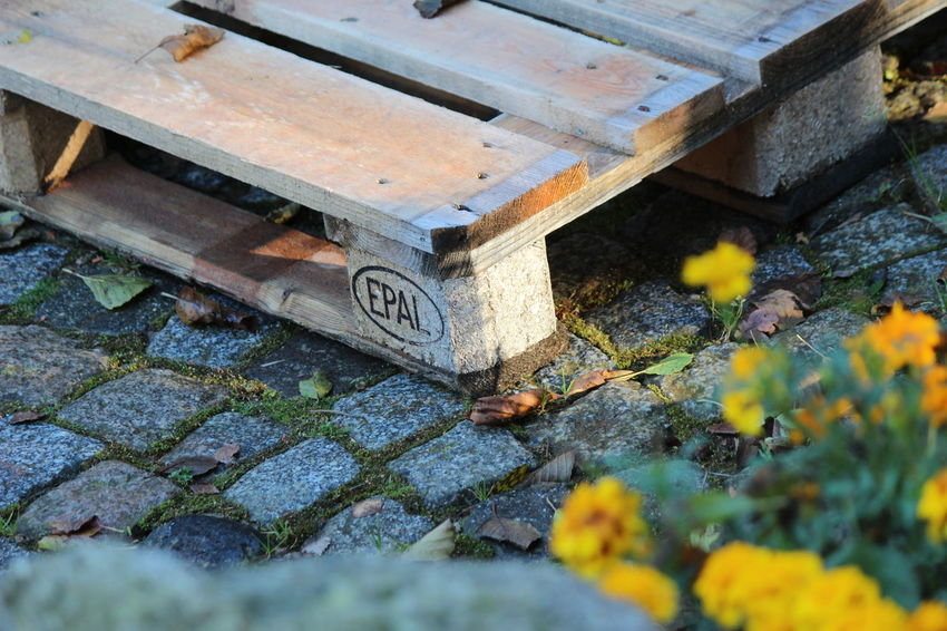 Architecture Beauty In Nature Built Structure Close-up Day Europe Field Flower Flowering Plant Growth High Angle View Nature No People Outdoors Palet Palette Plant Selective Focus Solid Stone Material Street Text Wood - Material