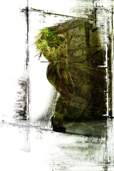 Graphic Design Photo Montage Double Exposure Swamp Thing Creature Of The Black Lagoon Forest Silhouette Beauty Beautiful Open Edit.