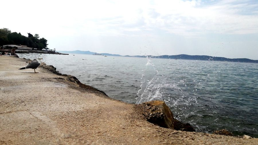 This is about Croatia.________________My favourite town-Zadar. Beach Sea Water Horizon Over Water Summer Beauty In Nature Sky Wave Travel Destinations Vacations Outdoors First Eyeem Photo Been There. Lost In The Landscape