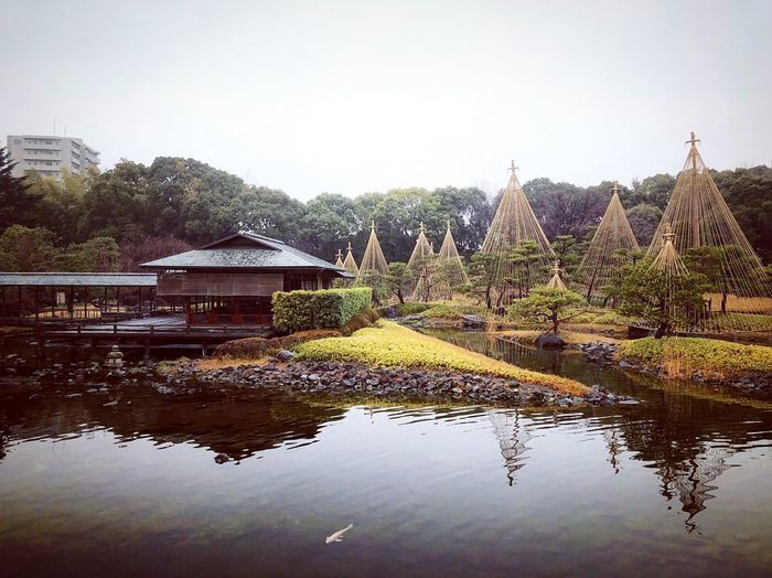 白鳥庭園 Nagoya Trip Travel Destinations Japanese Garden Japan Photography Japan Architecture Built Structure Water Tree No People Day Sky Tranquility