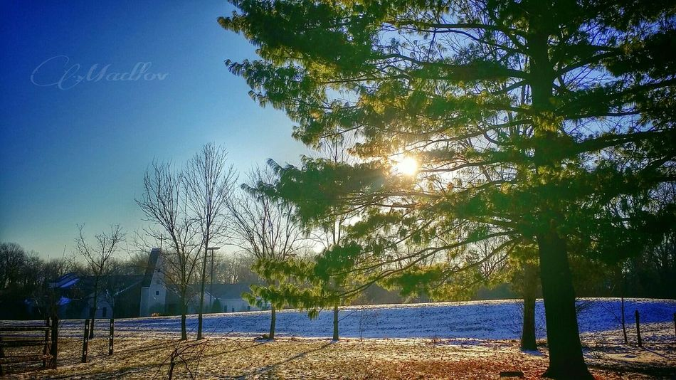 How's The Weather Today? Snow ❄ Check This Out Cincinnati Note3 Madlovphotos Madlovphotography EyeEm Best Shots EyeEmBestPics EyeEm Nature Lover #landscape