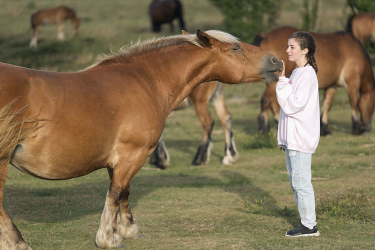 Girl with horse standing on field