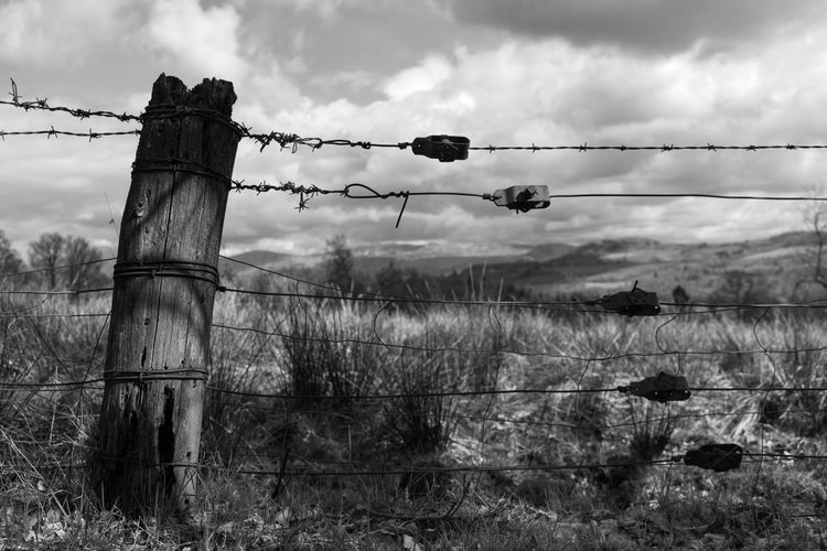 An old barb wire fence in the Scottish Highlands Field Sky Cloud - Sky Land Fence Boundary Nature Barrier Barbed Wire No People Plant Protection Wire Security Day Grass Safety Metal Landscape Outdoors Wooden Post