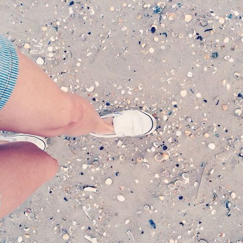 On the Beach Low Section Person Standing Personal Perspective Shoe Confetti Footwear Day Outdoors Fragility Beach Tranquil Scene Northsea Sand Danmark Landscape Shells On Sand, Legs And Feet