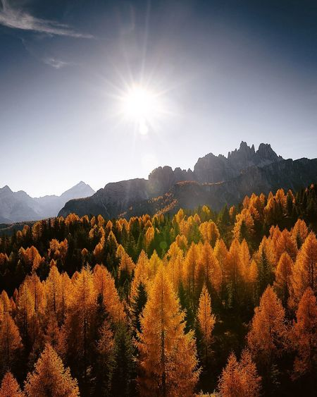 Magical Dolomites Nature Photography Landscape EyeEm Best Shots Dolomites, Italy Tree Beauty In Nature Sunbeam Nature Sun Scenics Lens Flare Mountain Landscape Tranquility Sunlight Silhouette Forest Mountain Range Sky Outdoors No People Tranquil Scene Day